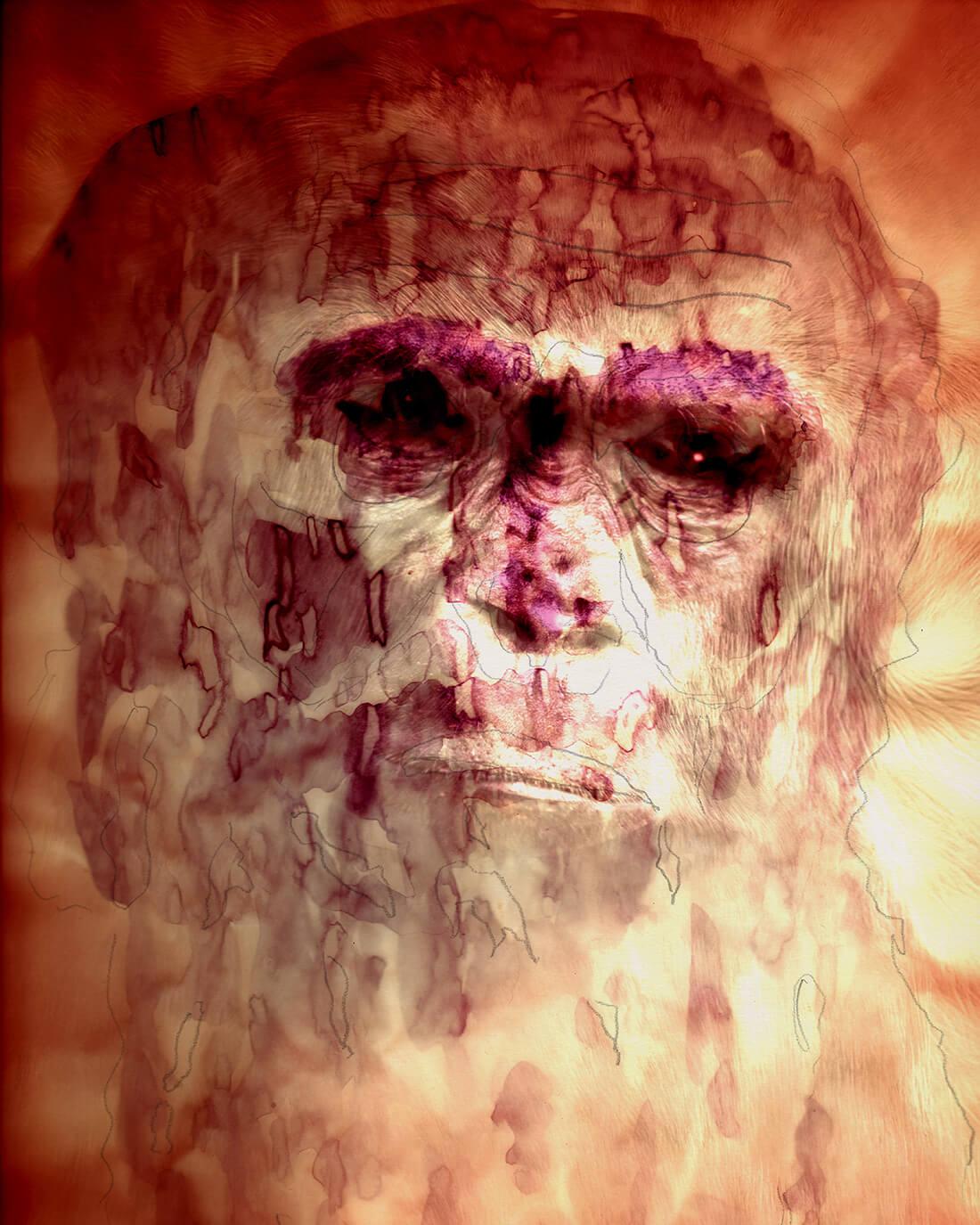 Mixed media portret Charles Darwin