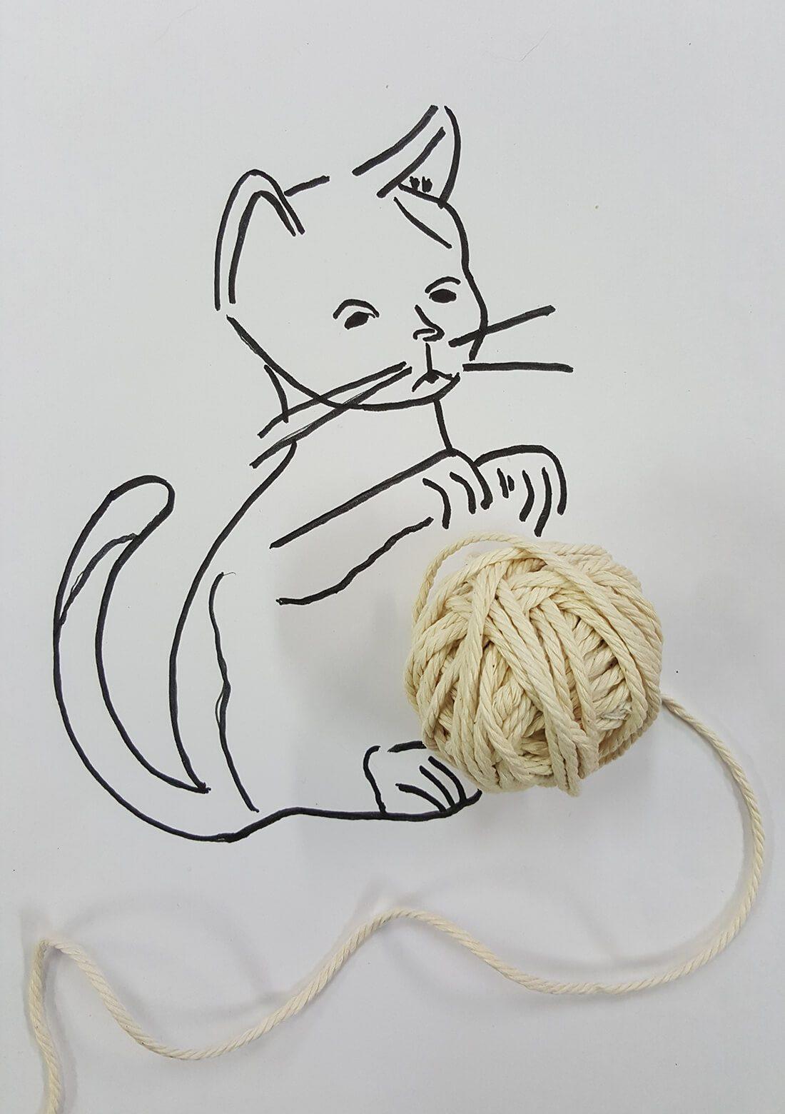 Bolletje wol als bal voor kat