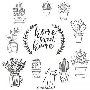 planten-raamdecoratie-krijtstift-raamtekening-chalkboard-illgraffdesign