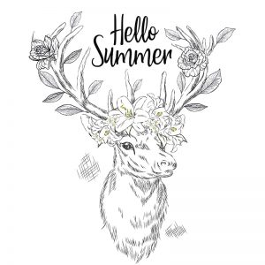 Dear summer - zomerse krijtstift raamtekening
