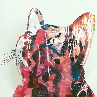 Mixed media painting - cat looking up